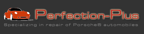 Perfection-Plus logo